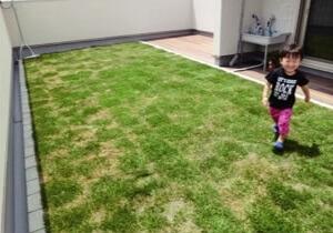 屋上に緑が広がる、ママが嬉しい工夫がいっぱいのお家